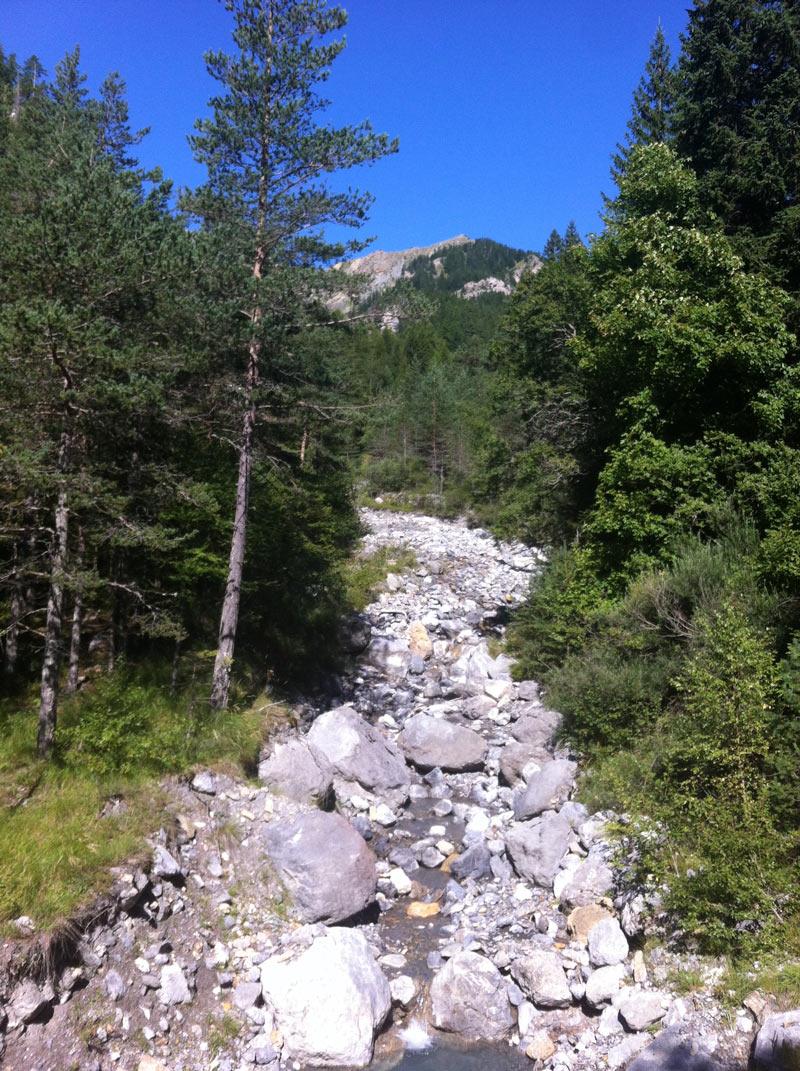 Le printemps dans la vallée du Mercantour avec le chalet Teck & Tonka